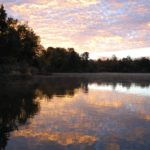Camping Near Springfield | 4 Best Sangamon County Camping Scenes